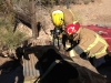 11-7-12-cow-extrication-pic-1