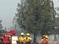 Steel Fire July 2017